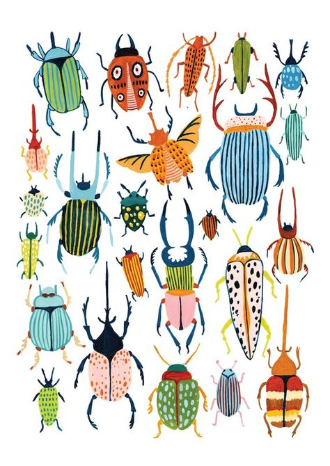Beetle Print / Bugs Print / Insect Art / Bugs Species /   Etsy