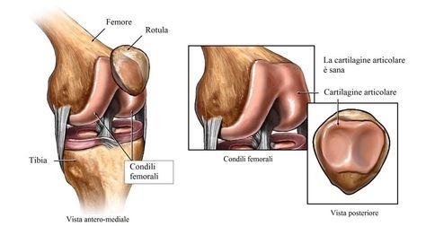 57 Ideas De Rodillas Rodillas Consejos Para La Salud Dolor En La Rodilla