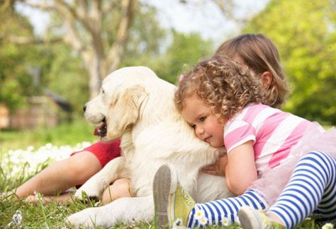 10 Reasons Adopted Senior Dogs and Cats are Great for Kids ...