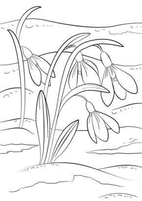 Pin By Sona Medkova On Jaro Spring Coloring Pages Coloring Pages Flower Coloring Pages