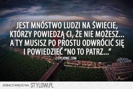 90 Cytaty Myśli-Ideen in 2021 | polnische sprüche, sprüche