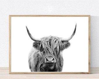 Horseshoe Cow Wall Art In 2020 Cow Wall Art Highland Cow Print Animal Wall Art Prints