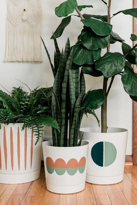 Amazon + Paint + Free Templates = These Cool Plant Pots   Hunker Jezabel Nix jezabelnix Mein Haus braucht… Can you believe these mod designer-inspired pots used to be just boring white? We're teaching you how to take a white planter from plain to Pinterest-worthy project, using nothing but paint. Here are the DIY details, including three printable templates — in case you don't trust yourself to freehand the design! #hunkerhome #DIY Amazon + Paint +… #Amazon #Hunker #paint #Plant #Templates