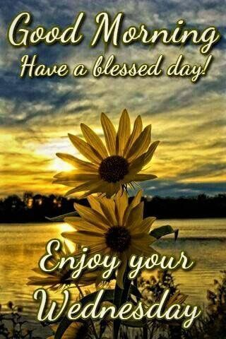 Good Morning Wednesday Images And Quotes : morning, wednesday, images, quotes, Sunrise, Sunflower, Morning,, Enjoy, Wednesday, Pictures,, Photos,, Images, Halloween, Food,, Morning, Wednesday,, Greetings