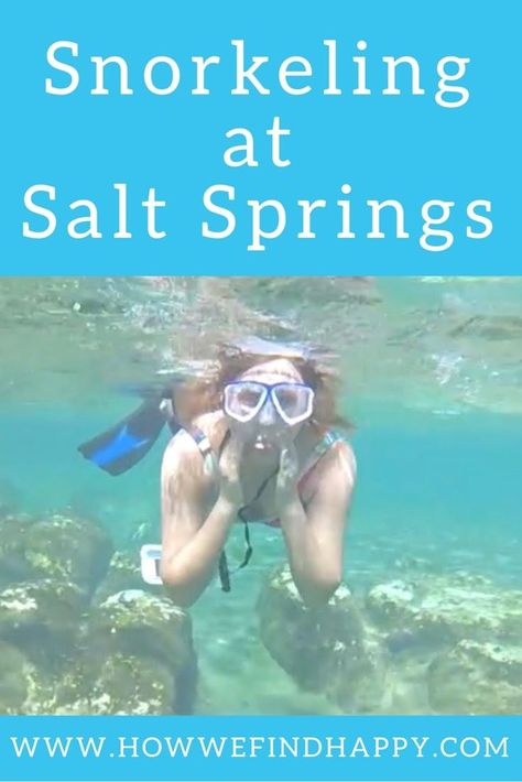 Snorkeling Salt Springs in the Ocala National Forest - How We Find Happy #Find #forest #Happy #National #Ocala #Salt #Snorkeling #Springs