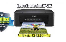 Pin On Expression Xp Adjustment Program