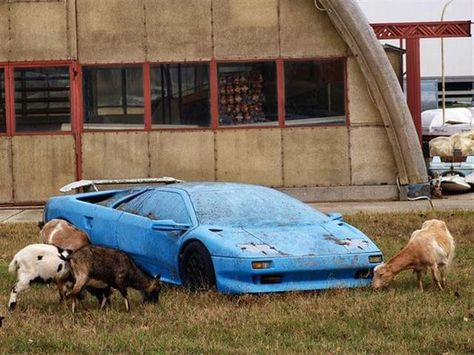 Iconic Rare Cars Abandoned Left To Rot (34)