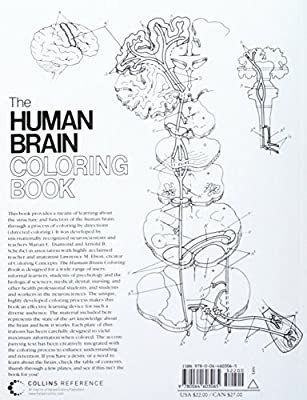 The Human Brain Coloring Book Lovely The Human Brain Coloring Book By Diamond Books Amazon Coloring Books Coloring Pages Anatomy Coloring Book