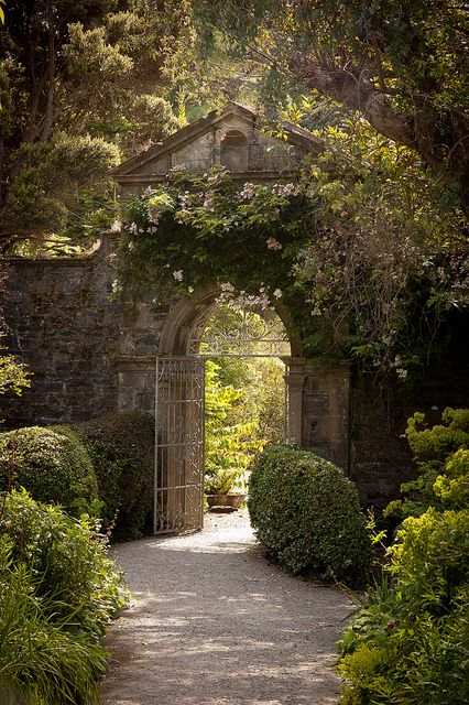 Irish garden gateway to the secret garden at the back of the house obviously.what a wonderful thing The Secret Garden, Secret Gardens, Hidden Garden, Garden Gates, Garden Entrance, Garden Doors, House Entrance, Entrance Doors, Garden Archway