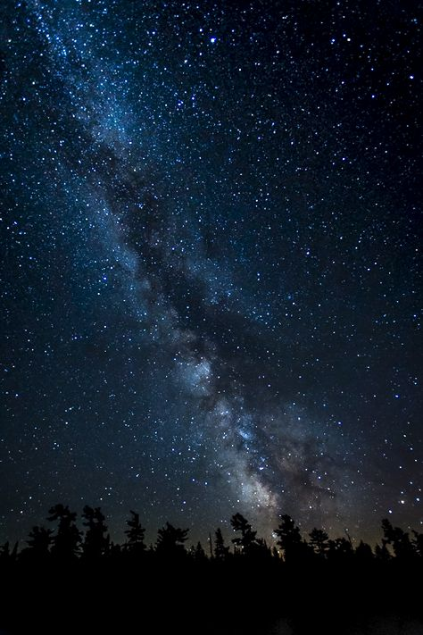 Night Sky in Algonquin Park - by Rob Nelson