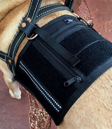 Dog Training Greensboro Nc Dog Training Treats Bulk Robert