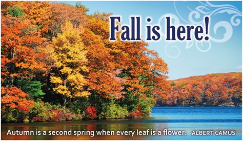 Free Fall is Here eCard - eMail Free Personalized Autumn Cards Online