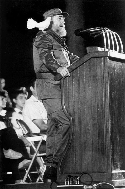 Top quotes by Fidel Castro-https://s-media-cache-ak0.pinimg.com/474x/37/42/c8/3742c8f9fc7e141eece7c88f357bb3d4.jpg