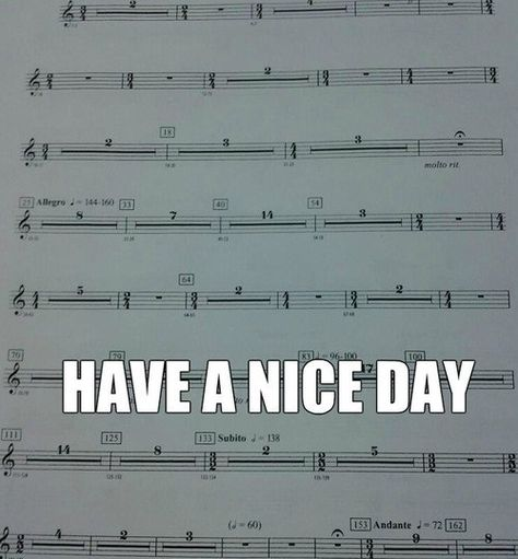 This is the complete opposite of the clarinet. You play the entire song with not even a beat of rest.<<< You lucky duck. I play the larger version, a bass clarinet. Funny Band Memes, Marching Band Memes, Marching Band Problems, Funny Jokes, Band Nerd, Musik Genre, Music Jokes, Funny Music, Piano Funny