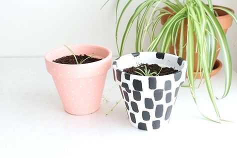 diy plant pots – pontalcountryclube.online