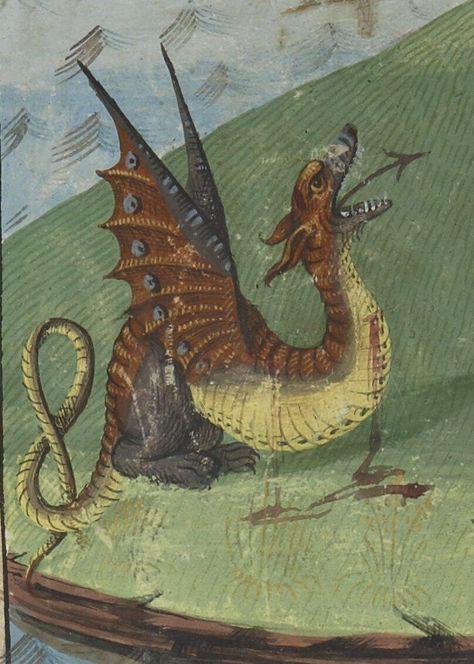 Image result for dragon medieval art