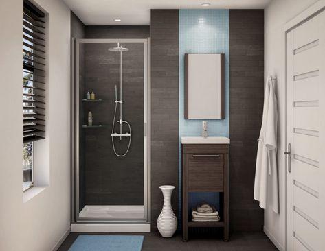 Pivot Hinge Shower Doors Frameless Shower Doors Modern