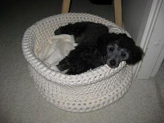 Crochet Dog Bed Pattern Crocheted Pet Bed Sofa Crochet Pattern Pdf