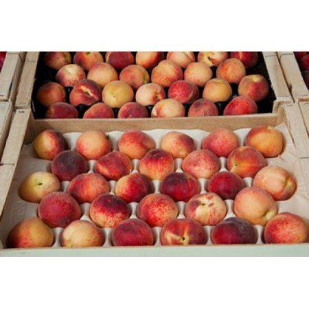 Peaches At A Market Stall Lourmarin Vaucluse Provence Alpes