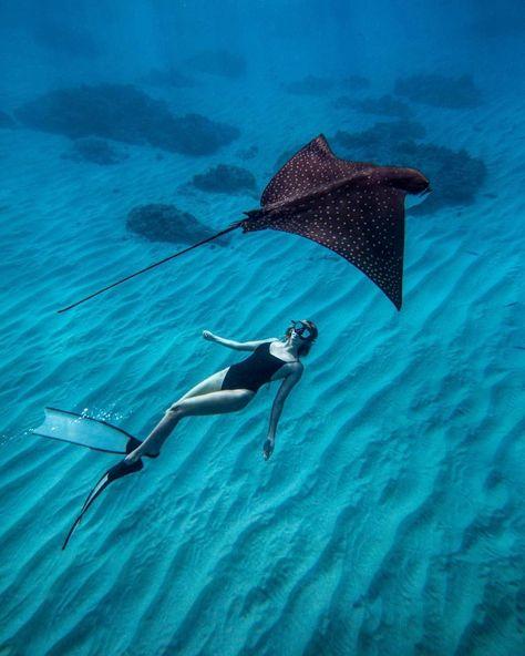 Incredible photo  @fatboybrock ,  @naltru 💥😍 . #repost  #Follow 🔥 @apnea.pirates #Follow 📷 @fatboybrock  #Follow 💎 @naltru  . #dive #diver #mydubai #dubai #uae #apnea #apneapirates #apneaacademy #freediving #freediver #freedivers