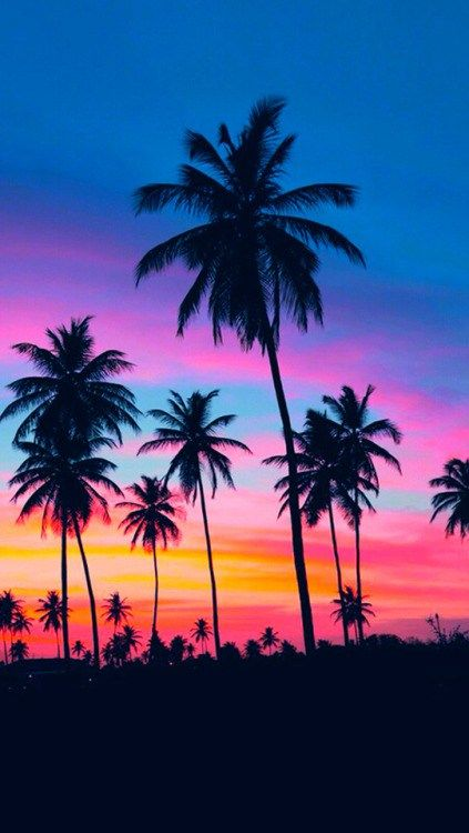 40 New Tumblr Iphone Wallpaper Ideas Nature Photography Sunset Photography Wallpaper