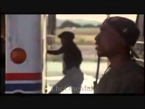 Kendrick Lamar Ft Drake Poetic Justice Yolo Cruzz Remake Short