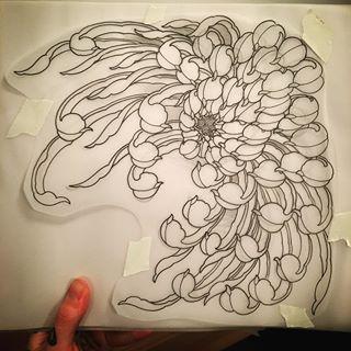Chrysanthemum Hinh Xăm Nhật Hinh Xăm Hoa Hoa Mẫu đơn