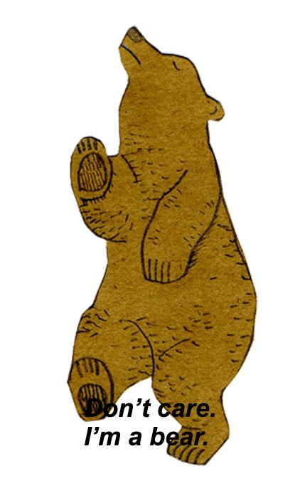 dont care im a bear, words, quotes, bear, cute