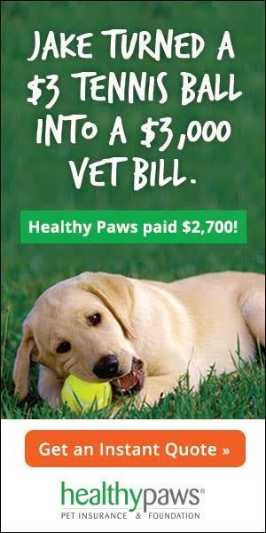 Image Result For Pet Health Insurance Ads Pet Insurance Reviews