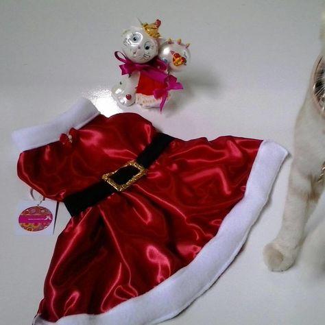 vestido pet confeccionado em tecido de cetim , tamanho P <br>envio em uma linda caixinha de presente