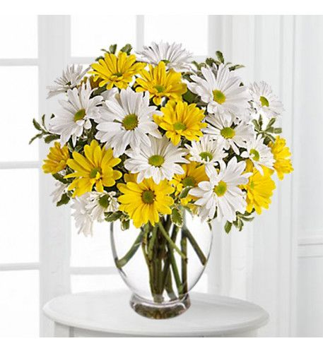 Sunny Bright Bouquet Of White Daisy And Yellow Daisy Arranjos