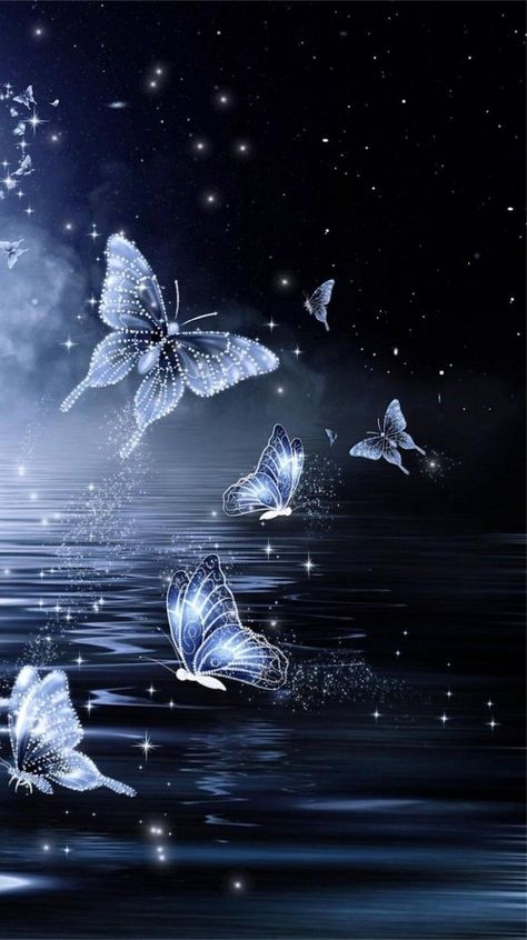 Midnight Butterfly Wallpaperby Unknown Artist