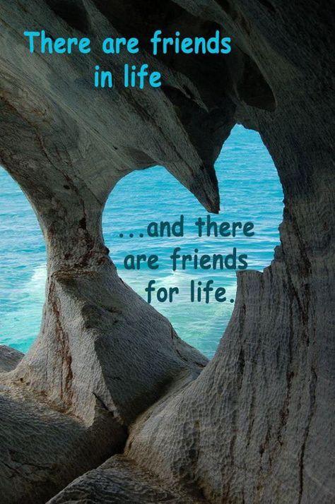#friendsforlife #mindful2019 #mindfulmemo