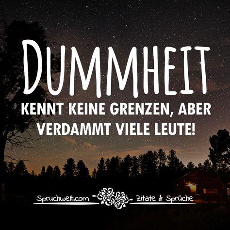 Dummheit kennt keine Grenzen, aber verdammt viele Leute - Lebensweisheiten #zitate #sprüche #spruchbilder #deutsch