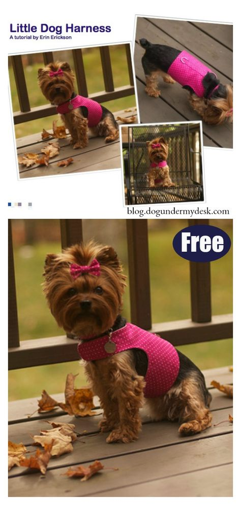 Little Dog Harness Free Sewing Pattern Startsewingfreepattern