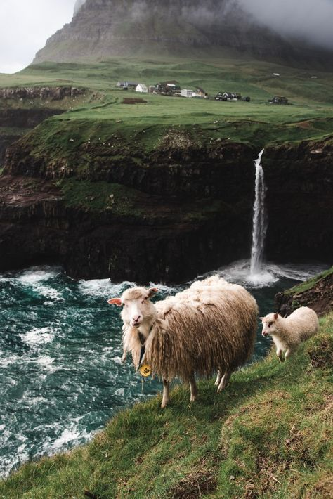 Mulafossur Waterfall - Faroe Islands - For the Love of Wanderlust
