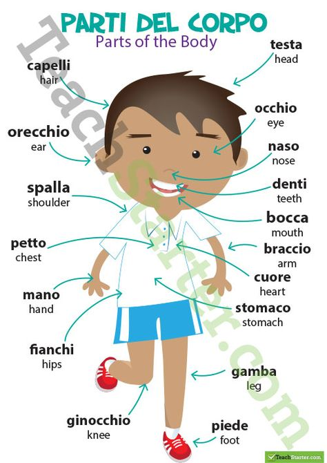 Parts of the Body/Parti Del Corpo – Italian Language Poster Teaching Resource