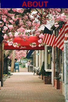 Visit The Main Street Business Association