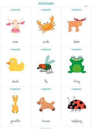 Animals In English Animal Flashcards English Activities Printable Flash Cards