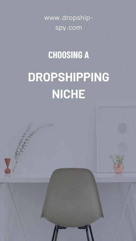 How To Choose A Dropshipping Niche | Dropship Spy
