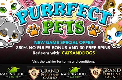 Grand Fortune Casino Bonus Codes Con Imagenes
