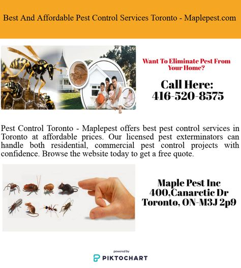 Do You Want To Hire Affordable And Reliable Pest Control Services In Toronto On Then You Can Rely On Maplepest Com Pest Control Pest Control Services Pests
