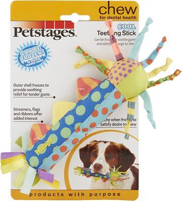 Petstages Cool Teething Stick Dog Chew Toy Chewy Com Dog Chew Toys Dog Chews Petstages