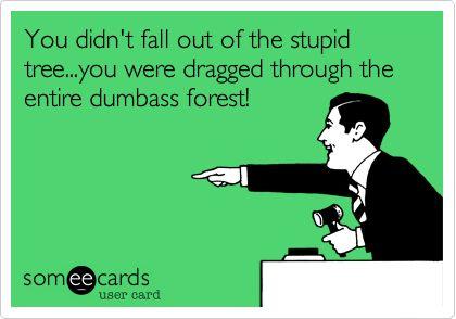 Stupid dum assholes