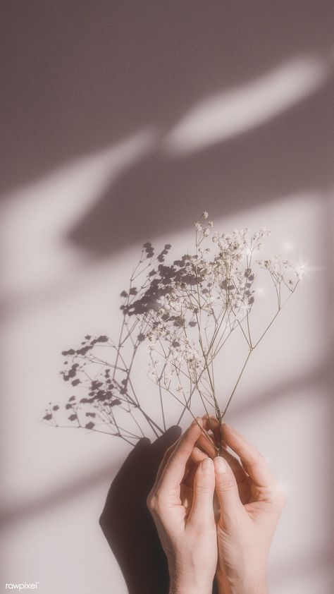 white aesthetic Woman holding white flowers on a p - aesthetic Look Wallpaper, Iphone Background Wallpaper, Aesthetic Pastel Wallpaper, Aesthetic Backgrounds, Aesthetic Wallpapers, Flowers Background Iphone, White Wallpaper Iphone, Quotes White Background, Aesthetic Pastel Pink