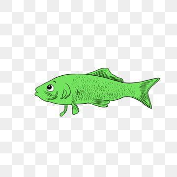 ปลาการ ต นปลาเล กปลาปลา ภาพต ดปะปลา ปลาน อยน าร ก น ำภาพ Png และ Psd สำหร บดาวน โหลดฟร ปลา แนวปะการ ง ร ปภาพ