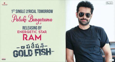 Hero Ram Will Be Launching Paluke Bangarama Song From Operation Gold Fish Tomorrow