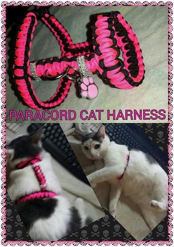 Paracord Dog Cat Harness Paracord Dog Collars Cat Harness