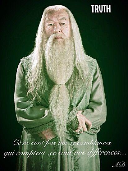 Albus Dumbledore Citations Personnages Harry Potter Harry Potter Drole Animaux Harry Potter