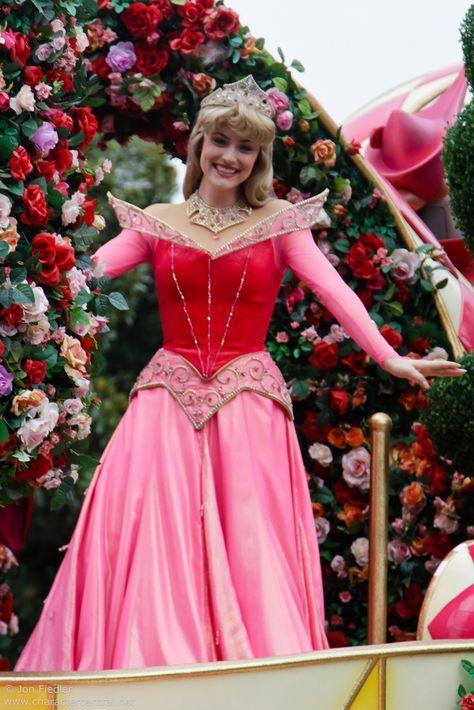 Aurorain Disneyland Tokyo